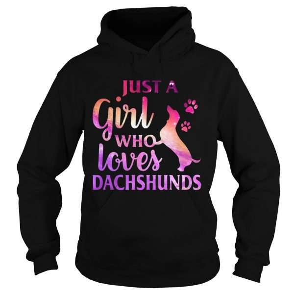 Just A Girl Who Loves Dachshund Colorful Gift hoodie