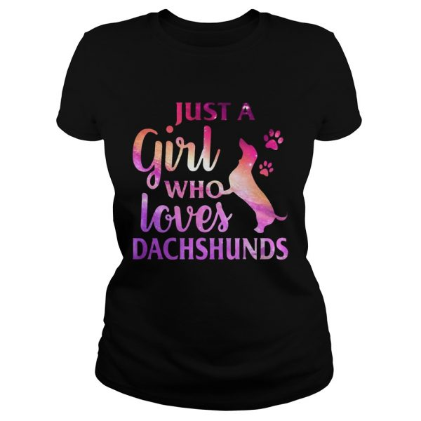 Just A Girl Who Loves Dachshund Colorful Gift ladies tee