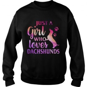 Just A Girl Who Loves Dachshund Colorful Gift sweatshirt