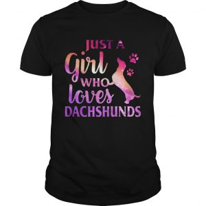 Just A Girl Who Loves Dachshund Colorful Gift unisex