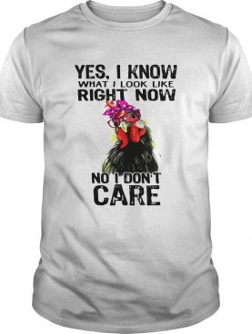 Hen yes I know what I look like right now no I don't care shirts