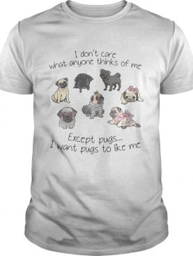 I don't care what anyone thinks of me excepts pugs I want pugs to like me shirt