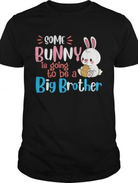 Some Bunny Is Going To Be A Big Brother Easter T-shirt