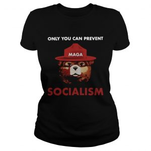 Only you can prevent socialism ladies tee
