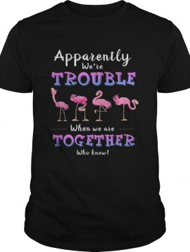 Original Apparently We're Trouble When We Are Together Flamingo shirts