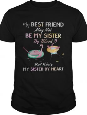 Flamingo my best friend may not be my sister by blood shirt