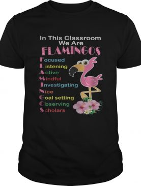 In This Classroom We Are Flamingo Focused Listening Active Mindful Shirt