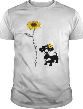 You Are My Sunshine Dachshund shirt