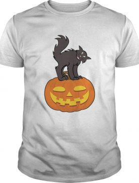 Black Cat On Pumpkin Funny Cat Lover TShirt
