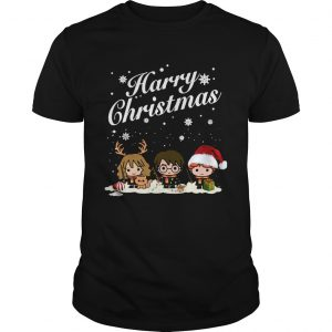 Harry Potter Hermione Granger And Ron Weasley Harry Christmas unisex