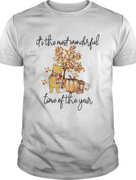 Pooh Pumpkin Its the most wonderful time of the year shirt