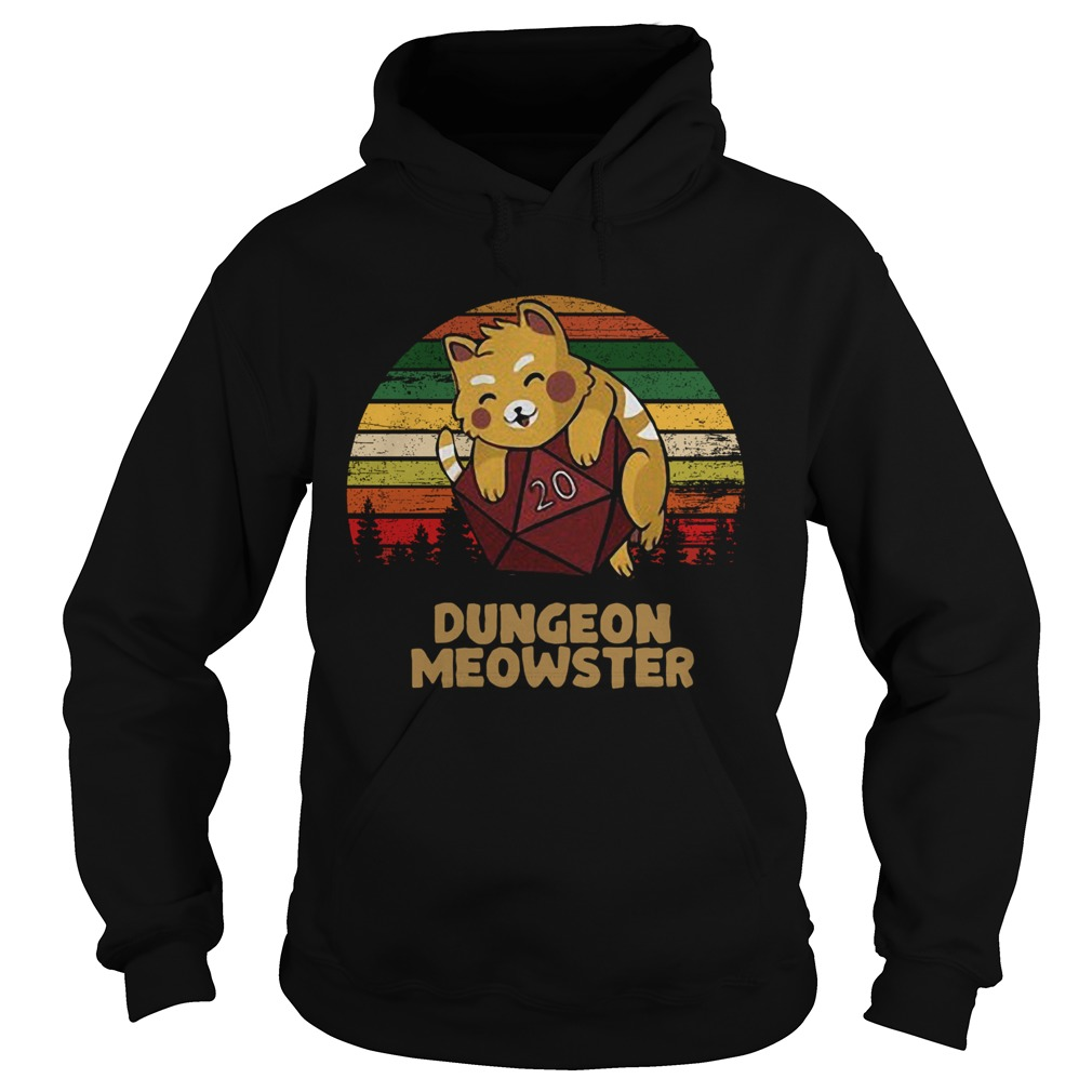 Dungeon Meowster Dnd Tabletop Gamer Cat  Hoodie