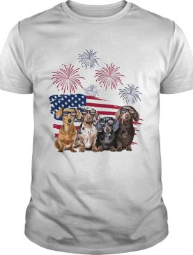 Dachshunds firework american flag independence day shirt