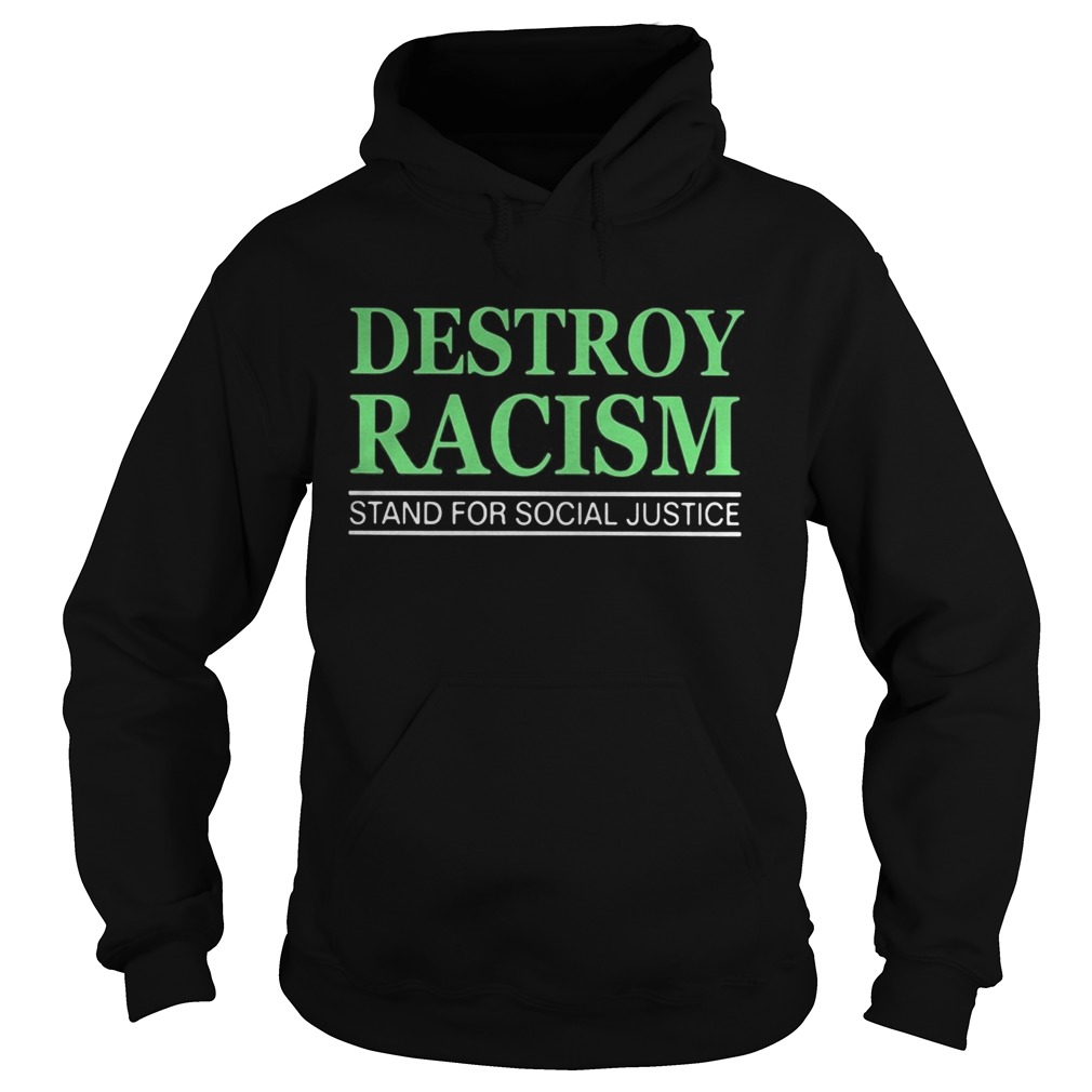 Destroy racism stand for social justice  Hoodie
