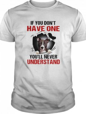 Basset Torn If You Don't Have One You'll Never Understand shirt