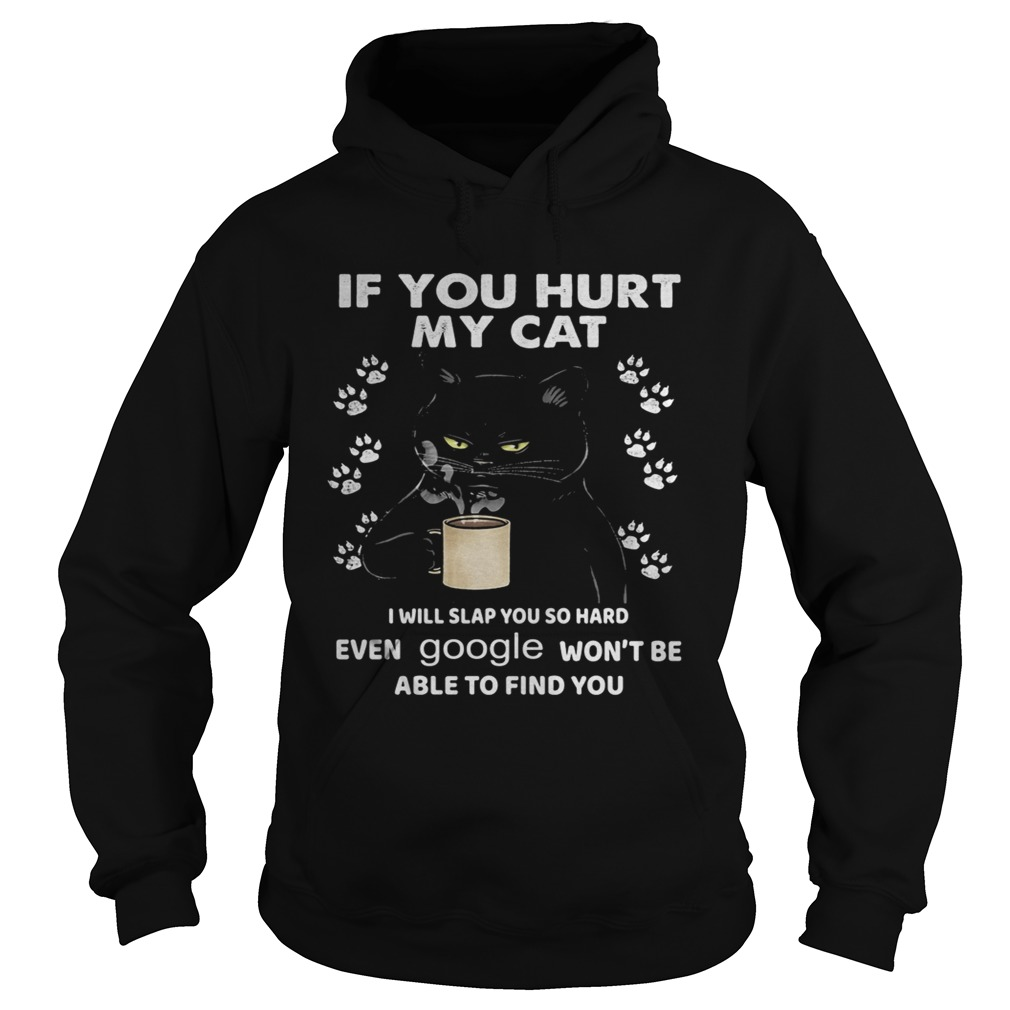 If You Hurt My Cat I Will Slap You So Hard Even Google Wont Be Able To Find You  Hoodie