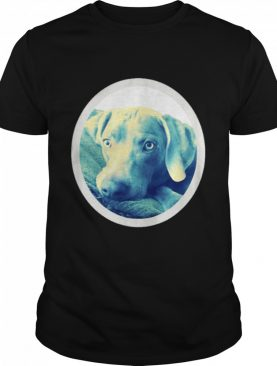 Cailey the weimaraner at rest shirt