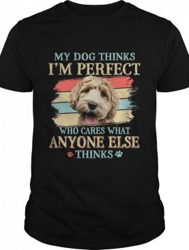 Labradoodle my dog thinks Im perfect who cares what anyone else thinks shirt